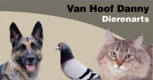 Van Hoof Danny